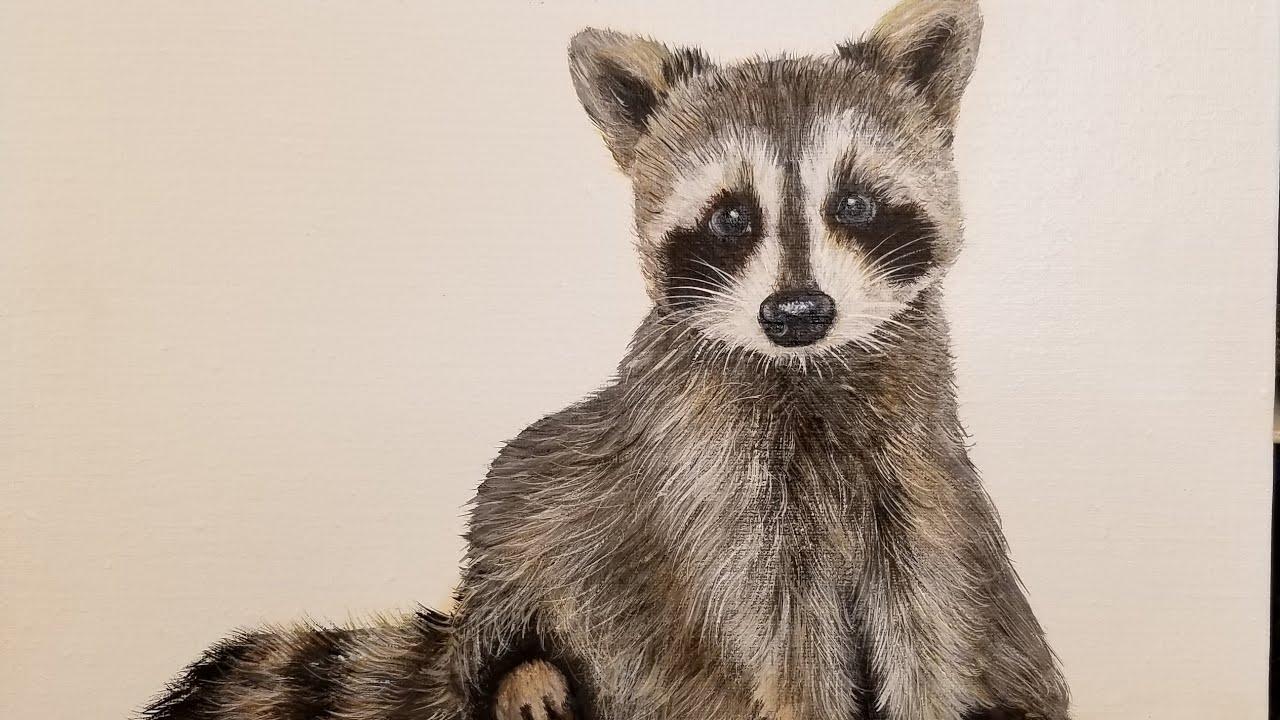 Baby Raccoon Acrylic Painting LIVE Tutorial