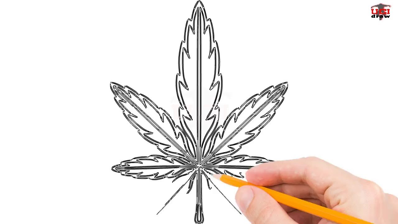 How To Draw A Weed Leaf Step By Step Easy For Beginners Kids
