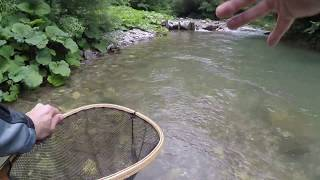 GoPro Slovenia Fly Fishing (raw footage)