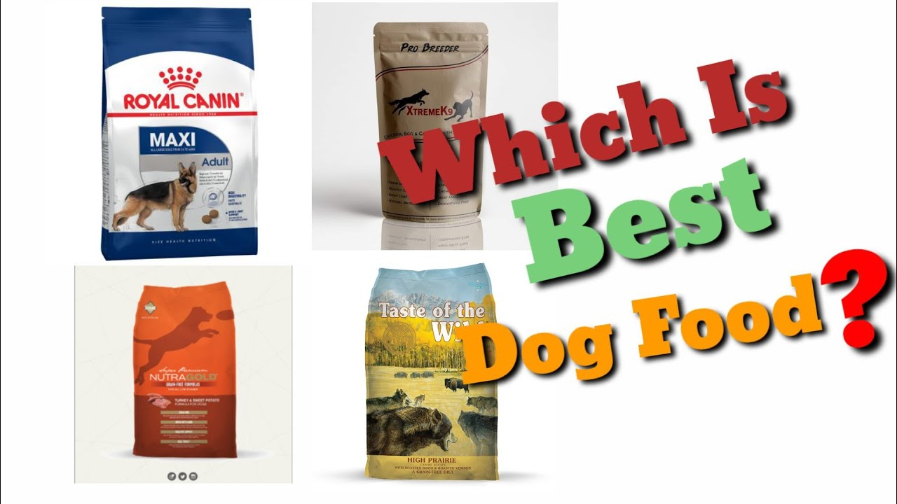 Which is Best Dog Food or Brand   Camparsion Of Dog Foods Availble in Paksitan