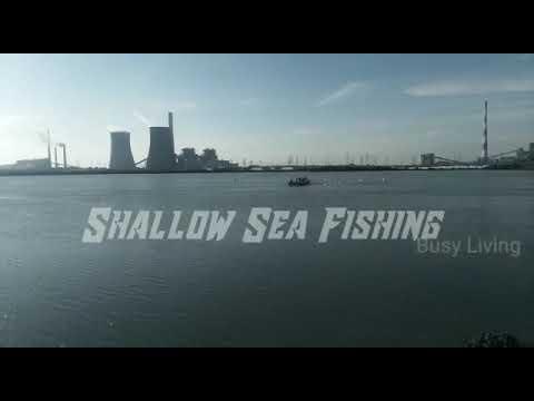 #Shallow Sea Fishing #Fishing Boat #Beach Fishing #Tuticorin Fishing