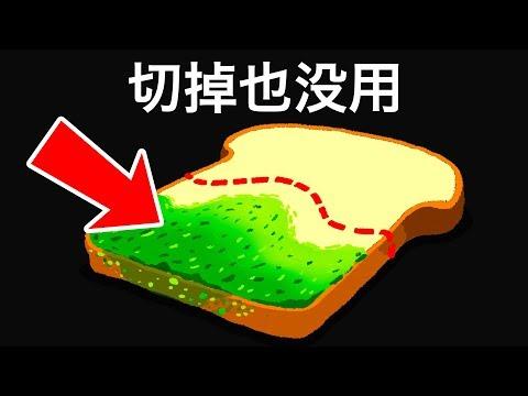 不小心吃了發黴的麵包會有怎樣的後果?