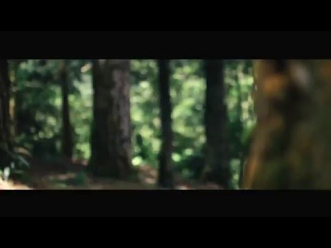 Shortfilm Adrenalin By Tengkolok Indera Film