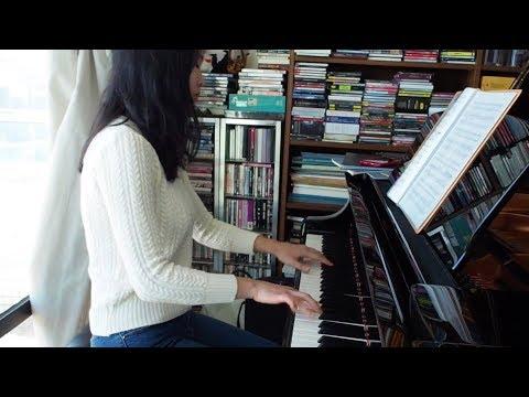 Mendelssohn Piano Trio No. 1 in D minor, op.49 (1st movement)