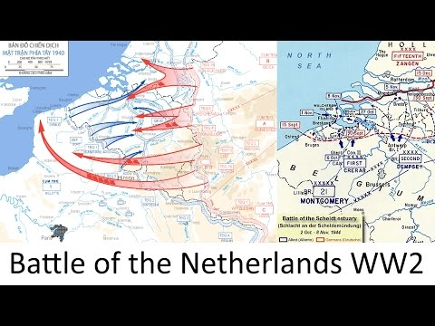 The Battle of the Netherlands 1940 WW2 every hour