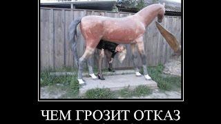 Смешные Новые Русские демотиваторы. ПРАВИЛА ЗИМНЕГО СЕКСА,.. наша RUSSIA.