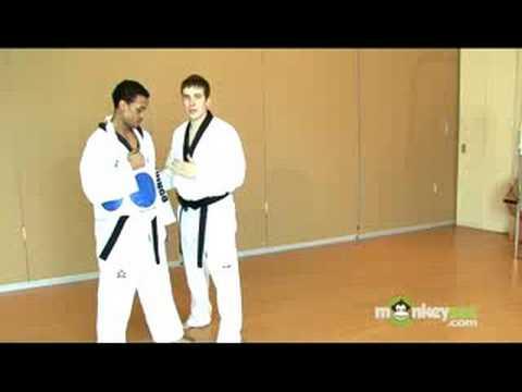 Basic Olympic Taekwondo Punches and Blocks