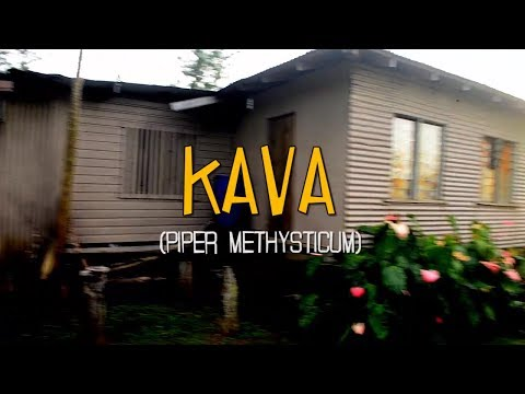 KAVA (2017)