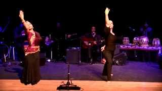 FLAMENCO INDIA-UNIQUE-Flamenco dance and Indian dance and music-Oliver Rajamani