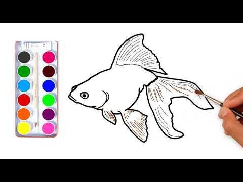 How To Draw Goldfish| Color Learning Page For Kids|ss Colour