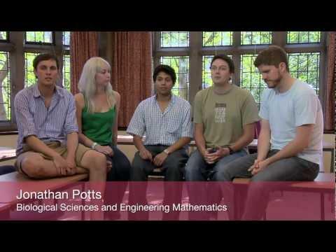 Postgraduate studies in Complexity