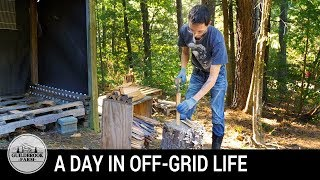 Off-Grid Living:  A Day Stacking Firewood