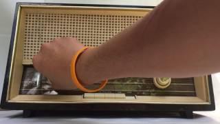วิทยุโบราณ; Telefunken Jubilate de Luxe 1261