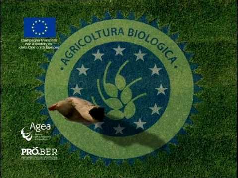 Organic food - bio-benessere.com