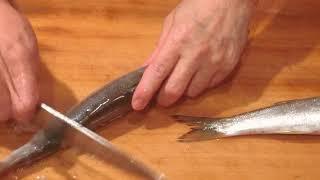 《カマス(魳)の捌きと 刺身、焼き物【1】》・・・・大和の料理《刺身》