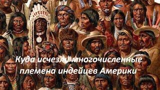 Куда исчезли многочисленные племена индейцев Америки. № 903