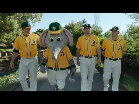 "OAKLAND ATHLETICS - ""ELEPHANT COUNTRY"" - HUB TV"
