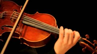 Johannes Brahms: Sonata in E flat major for Viola and Piano, Op 120 #2, Mvt 1