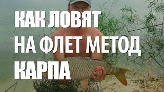 РЫБА КАРП на ФИДЕР - ЛОВЛЯ КАРПА на ФЛЕТ МЕТОД