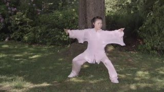 Simplified Tai Chi 48 Form by Helen Liang (YMAA)