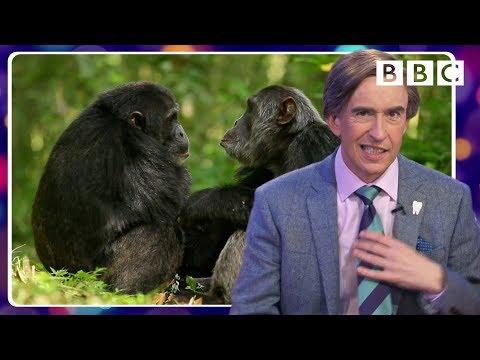 Alan Partridge's tragically hilarious animal impressions - BBC