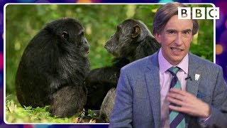 Alan Partridge's tragically hilarious animal impressions - BBC