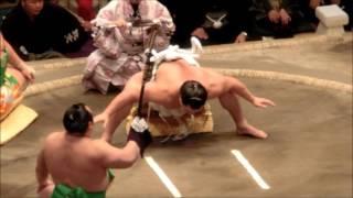 日馬富士 横綱土俵入り 平成28年大相撲初場所 太刀持ち宝富士 露払い誉...