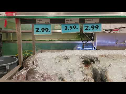 Canada Fish Market