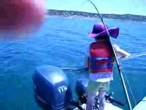 Don pedro kokanee salmon fishing 6 1 08 youtube for Don pedro fishing report