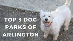 Top 3 Dog Parks in Arlington, VA