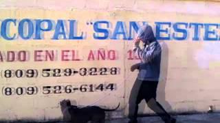 CANTARE CON LIBERTAD, Principios del Fin (TBNL) Vídeo Oficial. Hijo Adoptivo