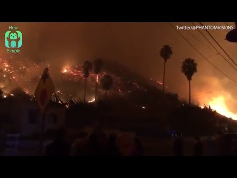 Wildfire forces thousands from homes in Ventura, California