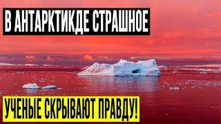 ЭКСПЕДИЦИИ ПОЛЯРНИКОВ УДАЛОСЬ ЗАСНЯТЬ НЕВЕРОЯТНОЕ!!! ФИЛЬМ ЗАПРЕЩЕН! 07.06.2020 ДОКУМЕНТАЛЬНЫЙ ФИЛЬМ