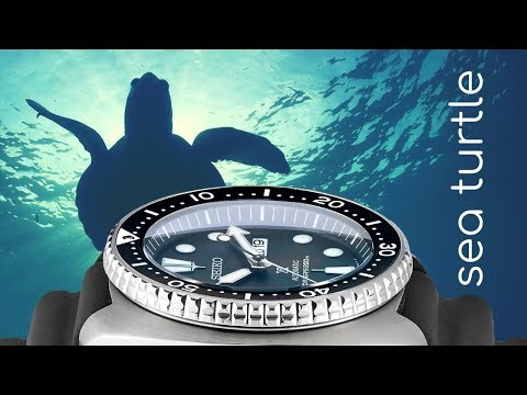 Seiko Dive Watch Exclusive - The Long Island Sea Turtle Watch