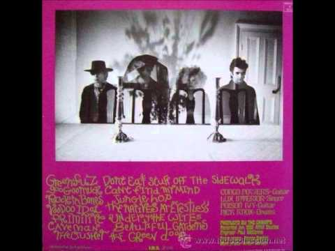 The Cramps-Psychedelic Jungle(Full Album)