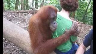 Mum and Jackie the Orangutan