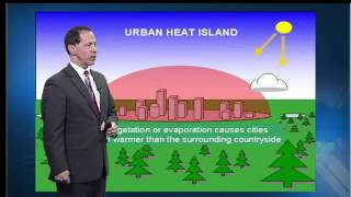 What is the heat island effect?