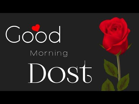 Good Morning Dost~whatsapp status|Morning wishes|Good morning videos|Hindi Shayari - lyrics
