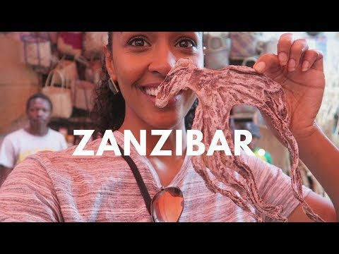 Travel Vlog | Robbed in Zanzibar?