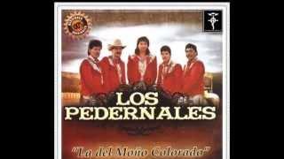El Gallo Tuerto - Los Pedernales Álbum 2014