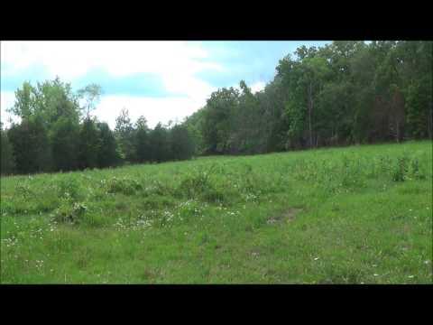 40 acres Crawford County, Missouri