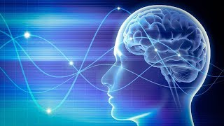 Deep Sleep Delta Waves Music for Stress Relief: Healing Delta Binaural Beats for Brain Power