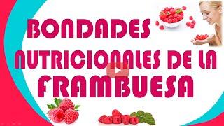 Bondades Nutricionales De La Frambuesa