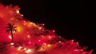 Video 185 | İzmir'in Sarı Kırmızı Yandığı Unutulmaz Gece👏 Forza Göztepe !