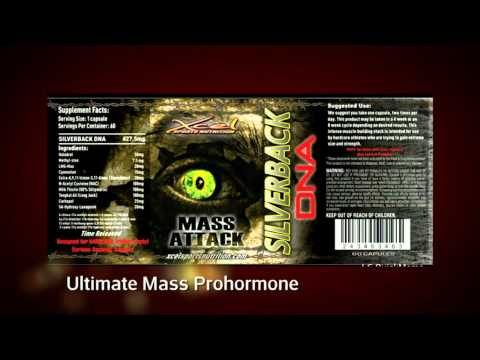 Xcel Prohormones Epistane,Max LMG, Halodrol At Muscle Freaks Nutrition