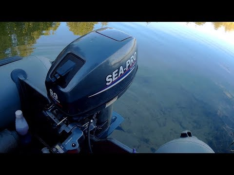 Sea Pro 9.9(15) и Suzuki 9.9AS Вечерняя прогулка