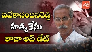Latest Update on YS Vivekananda Reddy Case | YS Jagan | AP News | YSRCP Party | YOYO TV Channel