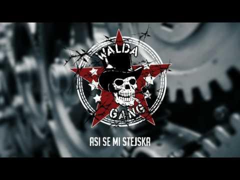 Walda Gang   - Asi se mi stejska (Official Audio)