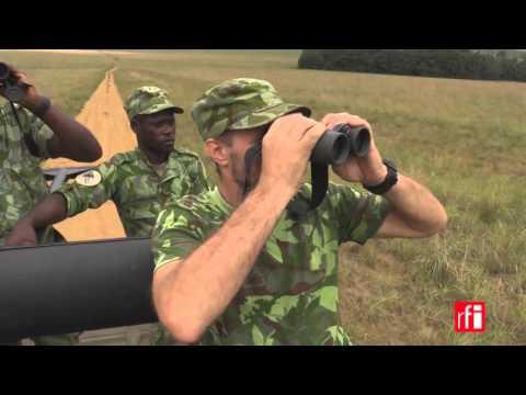 Gabon : un patrimoine naturel à protéger d'urgence