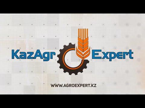 Видео-визитка КазАгроЭксперт 2020